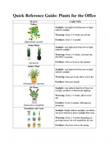 Quick Reference Guide - Plants for the Office