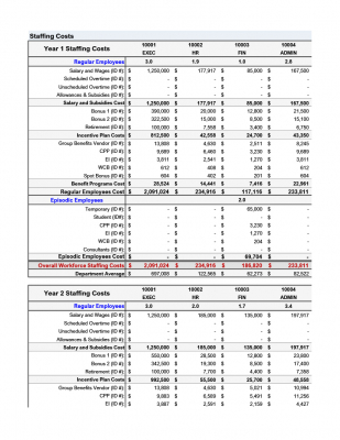 Staffing Budget - Template
